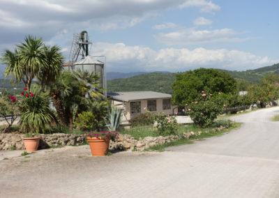 Azienda avicola Frosinone