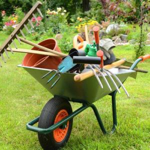 Tutto per il giardino Frosinone
